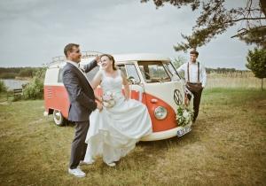 Hochzeitsauto, VW-Bulli, Falkenberg/Elster, Kiebitz, See