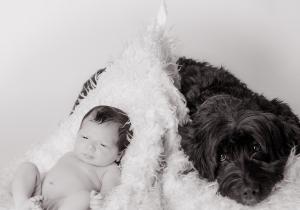 Baby, Hund,